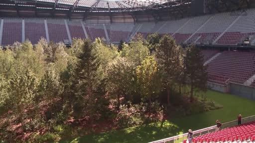 For Forest Im Klagenfurter Stadion Steht Ab Sofort Ein